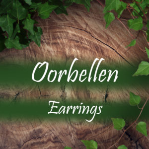 Oorbellen/ Earrings