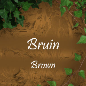 Bruin/ Brown