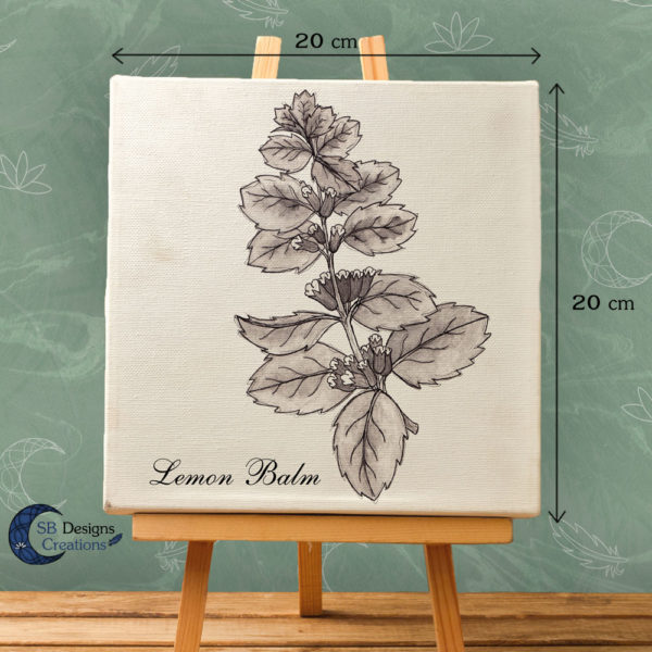 Lemon Balm - Citroenmelisse Ink Drawing Print on Canvas-2