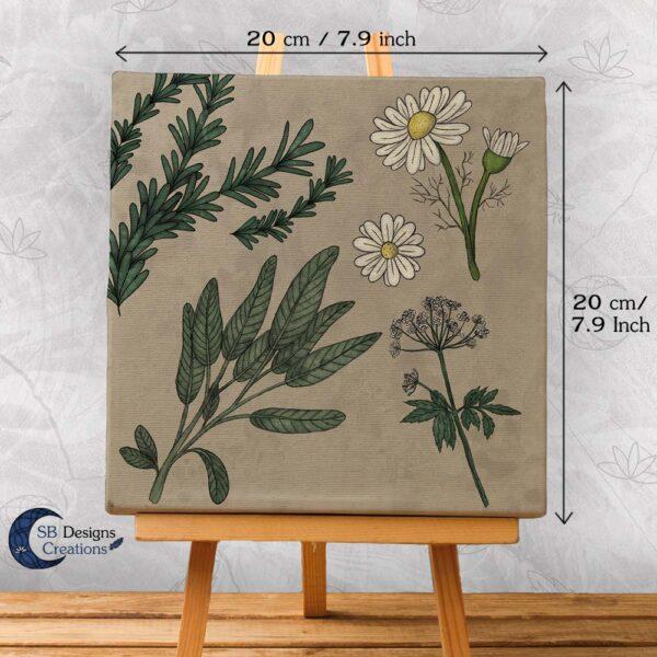 Thee-Kruiden-Art-Salie-Zevenblad-Kamillie-Rozenmarijn-2