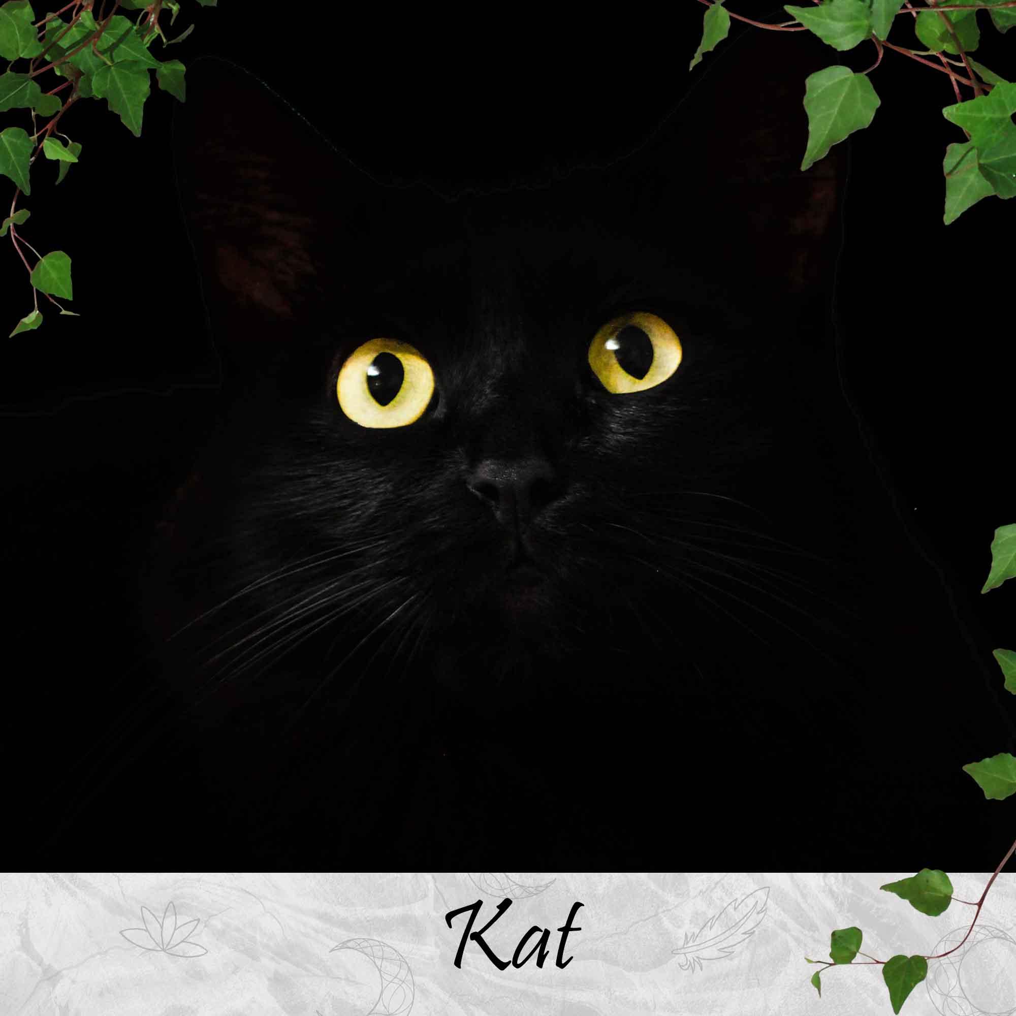 Kat-Krachtdieren-Spirit-Animals-Thema-Producten-SBDesignsCreations