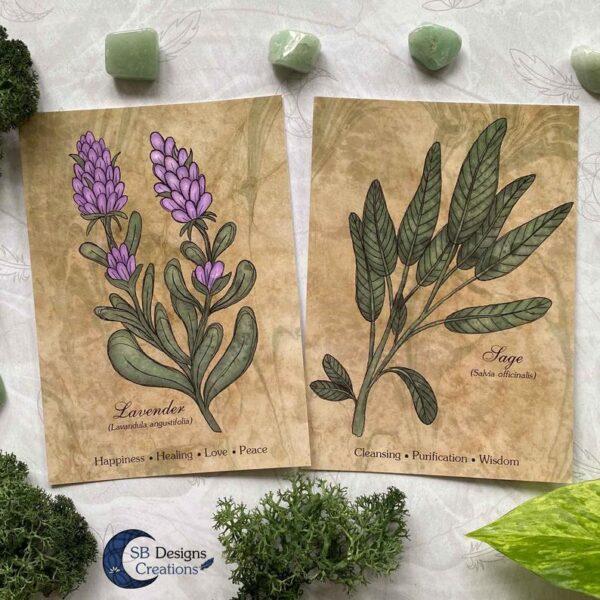 Lavendel-Sage-Planten-Print-A6-Decoratie-1