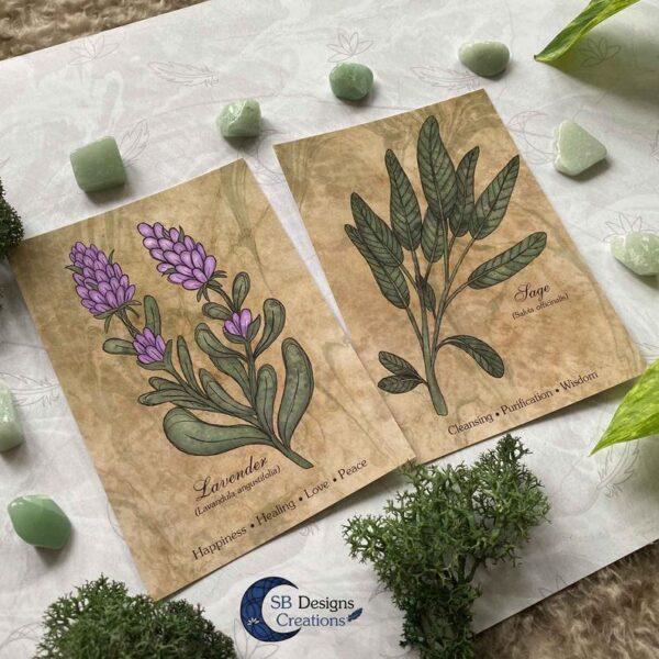 Lavendel-Sage-Planten-Print-A6-Decoratie-2