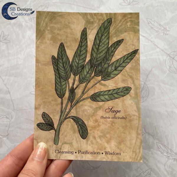 Lavendel-Sage-Planten-Print-A6-Decoratie-4