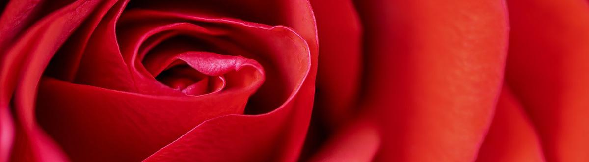 Betekenis Kleur Rood Spirituele Producten Kleurenmagie