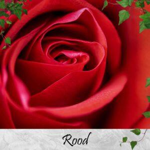 Rode sieraden
