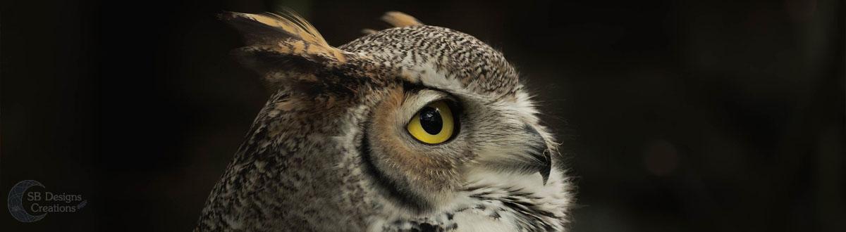 uil-owl-Banner-Animal Spirit-SBDesignsCreations