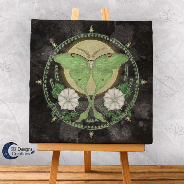 Maanvlinder Luna Moth Maanbloemen Krachtdieren Spirit Animal