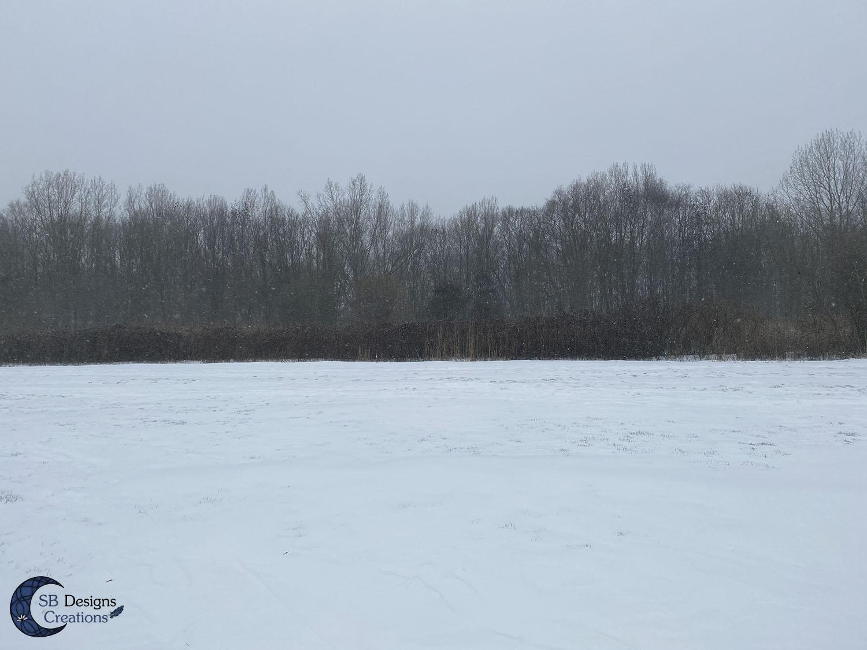 Winter-Natuur-Inspiratie